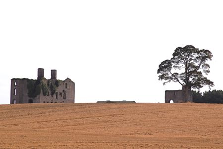 Rathcoffey Castle - Processed