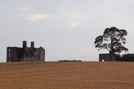 Rathcoffey Castle - Original
