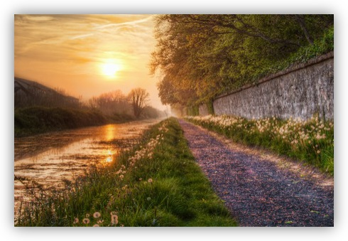Sunset on the Royal Canal