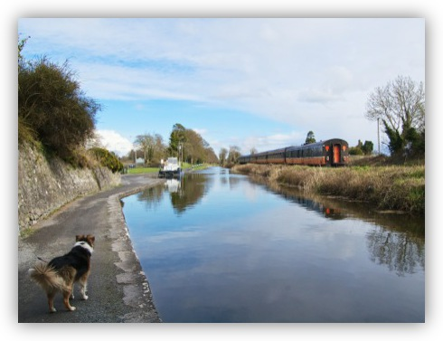 The Royal Canal Shuttle heads off into the distance